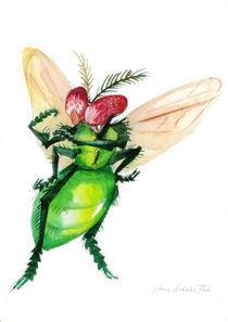 Fliege von Anna Eliza Lukasik-Fisch