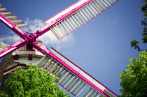 Moulin Pink I by Thomas Schaefer
