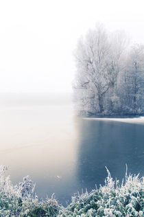 Winter Blues I by Thomas Schaefer