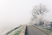 Winterlandschaft im Nebel I by Thomas Schaefer