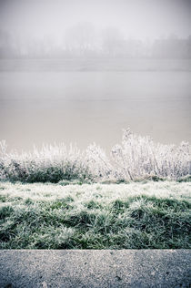 Winterlandschaft im Nebel III by Thomas Schaefer  (www.ts-fotografik.de)
