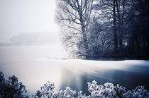 Frozen Landscape II von Thomas Schaefer