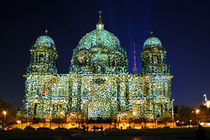 Berliner Dom im Leopardenfell by Christian Behring