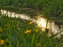 Abend im Frühling von Jens Uhlenbusch
