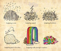 hedgehog goes rainbow von Joanne Liu