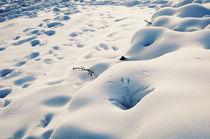 Erotic Snowfield III by Thomas Schaefer  (www.ts-fotografik.de)