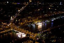 Paris from the Eiffel Tower von Ioana Epure