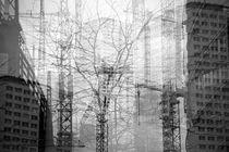 Metropolis von Alessia Cerqua