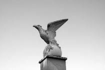 Imperial Eagle Rome von Julian Raphael Prante