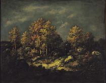The Jean de Paris Heights in the Forest of Fontainebleau by Narcisse Virgile Diaz de la Pena
