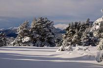 Paisaje nevado by Jose María Palomo de la Fuente