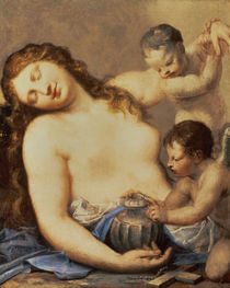 Penitent Mary Magdalene with putti  by Pietro Liberi