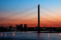 Rheinkniebrücke by Markus Hartmann