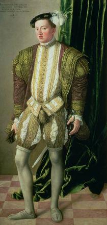 Archduke Ferdinand of Tirol  by Jakob Seisenegger