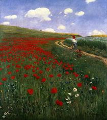The Poppy Field  by Pal Szinyei Merse