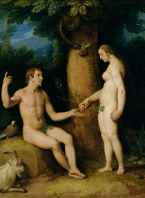 Adam and Eve by Cornelis Cornelisz. van Haarlem
