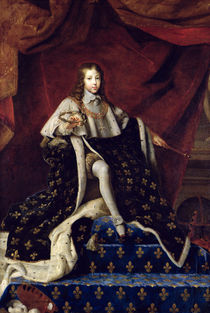 Portrait of Louis XIV  by Henri Testelin