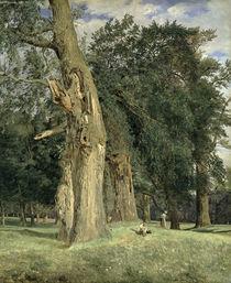 Old elms in Prater by Ferdinand Georg Waldmuller