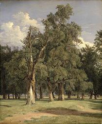 Elm trees in Prater by Ferdinand Georg Waldmuller