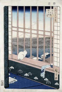Asakusa Rice Fields during the festival of the Cock from the series 'Meisho Edo Hyakkei'  by Ando or Utagawa Hiroshige