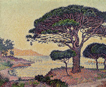 Umbrella Pines at Caroubiers by Paul Signac