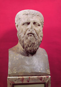 Bust of Plato  by Greek