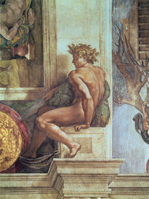Ignudo from the Sistine Ceiling  by Michelangelo Buonarroti