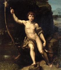 St. John the Baptist in the Desert by Raphael
