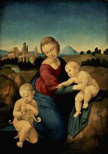 The Esterhazy Madonna von Raphael