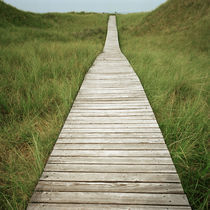Amrum - path to the sea #3 by oc