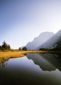 Große Scheidegg, Schweiz by Eva Stadler