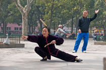 Chinese martial art by Thierry  Dehesdin