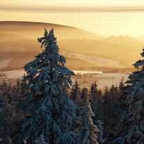 Blick vom Ochsenkopf von Markus Hartmann