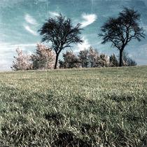 hazy memories by Gerald Prechtl