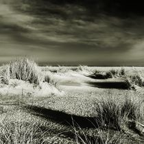 Img-6334-dfine-sylt-impressions-8