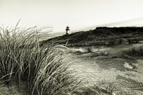 Img-6308-dfine-sylt-impressions-12