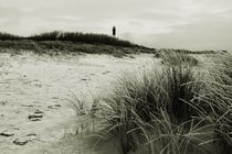 Img-4136-sylt-impressions-13