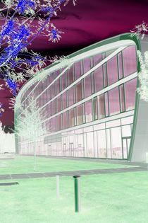 Popart - City Bonn - Part XV von Andre Pizaro