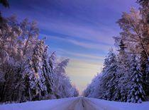 Winterroad von Benny Pettersson