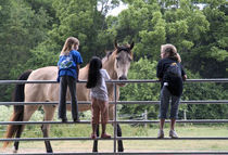 Horse lovers by bob bingenheimer