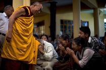Dalai Lama by Brent Foster