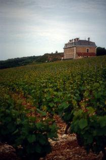 Vines and chateau near Beaune, France by bob bingenheimer