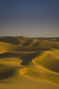 Golden Dunes, Swakopmund by Russell Bevan Photography