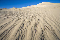 sand dune ripples von Ed Book