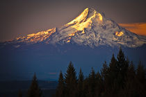 Mount Hood morning alpenglow by Ed Book