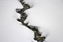 Stream Flows in Winter by Ed Book