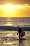 Sunset-surfer-4261