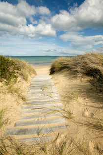 Path to the beach - Dolphin Sands, Australia von Jess Gibbs