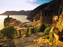 Vernazza, Cinque Terre, Italy von Marty Portier