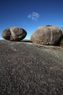 Bald-rock-national-park-nsw-australia-9952